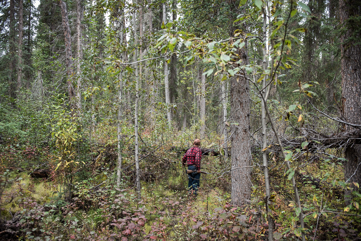 Doug Martens is hunting in Yukon forest